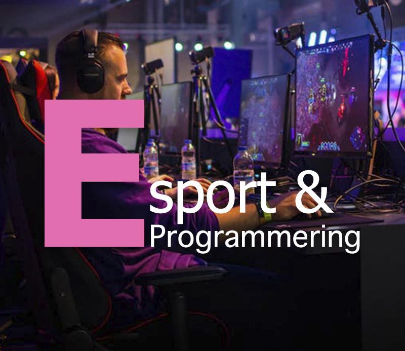 Link til hold - Esport